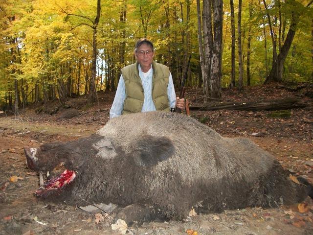 How to Hunt Hog